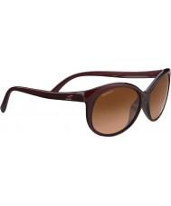 Serengeti 8430 солнцезащитные очки из черепахи катерины