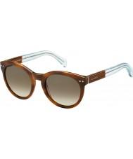 Tommy Hilfiger Дамы-й 1291-нс m9g j6 Havana коричневых лазурных солнцезащитных очков