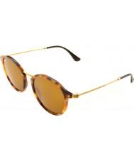 RayBan Rb2447 49 иконки черепаховый очки