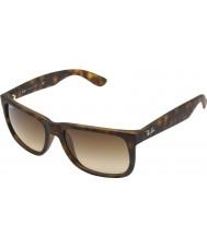 RayBan Rb4165 55 Justin резиновый свет черепаховый 710-13 очки