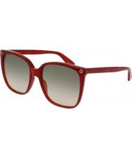 Gucci Дамский gg0022s 006 солнцезащитные очки