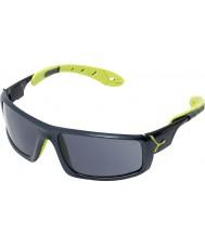 Cebe Ice 8000 антрацит синий Anis очки