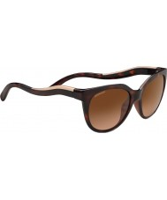 Serengeti 8572 lia черепаховые солнцезащитные очки