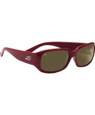Serengeti Юлиана сливы 555nm солнечные очки
