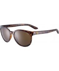 Cebe Солнцезащитные очки черепаховые солнцезащитные очки Cbsunri5