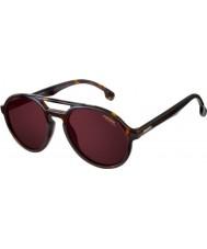 Carrera Солнцезащитные очки Carrera step blx 9o