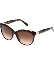 Furla Дамы Зизи su4896s-743 блестящие коричневые Havana-желтые очки