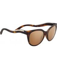 Serengeti 8574 lia черепаховые солнцезащитные очки