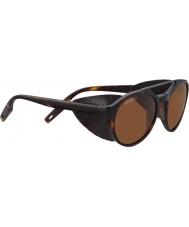Serengeti 8587 солнцезащитные очки из черепахи leandro glacier