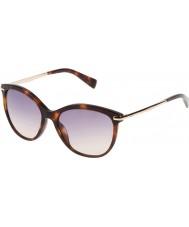Furla Дамы Стеллы su4961-04ap желтые Havana-темно-коричневые очки
