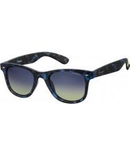 Polaroid Pld6009-нм сек Z7 Havana голубые поляризованных солнцезащитных очков