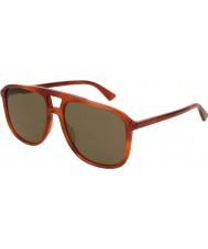 Gucci Мужские солнцезащитные очки gg0262s 002 58