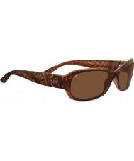 Serengeti 7911 солнцезащитные очки с членистоногими черепахами