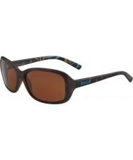 Bolle 12242 солнцезащитные очки с моллюсками черепахи