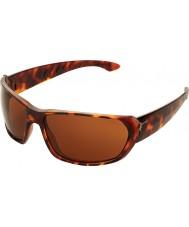 Cebe Trekker блестящие черепахового 1500 коричневые очки