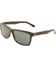 Polo Ralph Lauren Ph4098 57 случайных живой топ черного цвета на канистру черепаха 526087 солнцезащитные очки